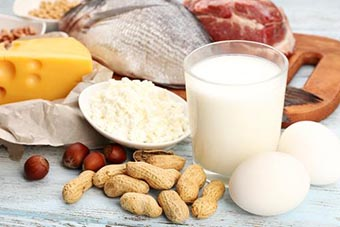 Various sources of protein foods