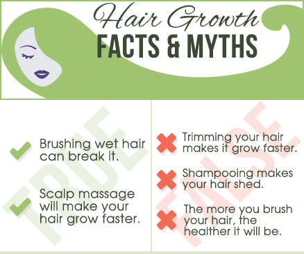 Hair growth facts and myths infographic