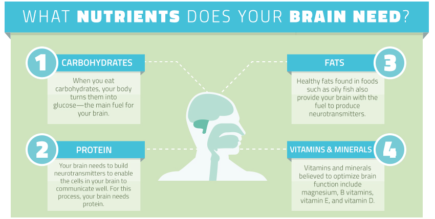 nutrients your brain needs infographic
